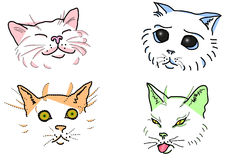 Cat's muzzles Royalty Free Stock Image