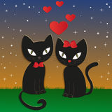 Cat's night - Illustration,  Stock Photos