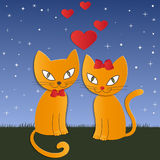 Cat's night - Illustration,  Royalty Free Stock Photo