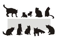 Cat's silhouettes. Black cat's silhouettes on white background. Digital illustration Stock Images
