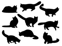 Cat's silhouettes Royalty Free Stock Image