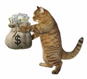 Cat with a sack of money Royalty Free Stock Photos