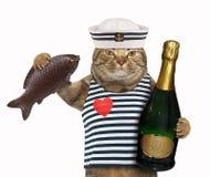Cat sailor with chocolate fish royalty free stock photos
