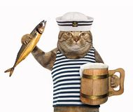 Cat sailor with mug of beer vector illustration
