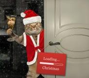 Cat Santa öffnet die Tür 2 lizenzfreie stockfotos