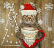 Cat with a Santa Claus cup of coffee 4. The cat in Santa Claus hat holds a big cup of black coffee. Snowflakes background royalty free stock photography