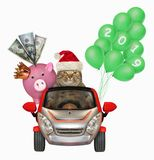Cat in a car with a piggy bank and balloons