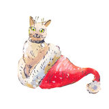 Cat in a Santa Claus hat. Watercolor illustraton isolated on whi Royalty Free Stock Image