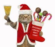 Cat Santa med julstrumpan royaltyfria foton