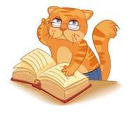 Cat - scientist Stock Photography