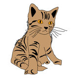 Cat Scouts icon cartoon design abstract illustration animal. Cat Scouts Abstract animal backdrop cartoon decorative design graphic icon illustration Royalty Free Stock Photo