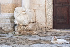 Cat and sculpture Royalty Free Stock Images