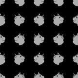 Cat Seamless Animal Pattern Fotografie Stock Libere da Diritti