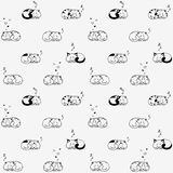 Cat seamless Stock Images