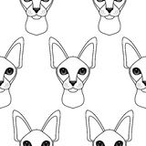 Cat seamless pattern Stock Photos