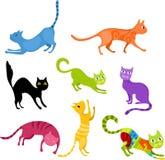Cat set Royalty Free Stock Photo