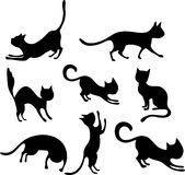 Cat set Stock Photos