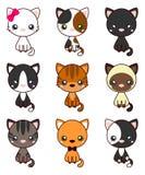 Cat Set, met zwarte kat, witte kat, grijze kat, grijze en witte kat, bruine en zwarte handeling, bruine kat royalty-vrije illustratie