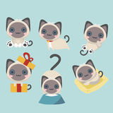 Cat Set siamoise illustration libre de droits