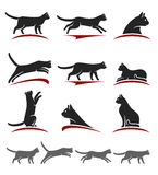 Cat set. Vector. Animal, silhouette Royalty Free Stock Photos