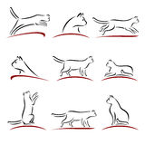 Cat set. Vector. Illustration cute collection sequence Royalty Free Stock Photos