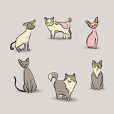 Cat set Stock Photo
