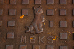 The cat in the sewer. Kuching, Sarawak Malaysia. Borneo Royalty Free Stock Images