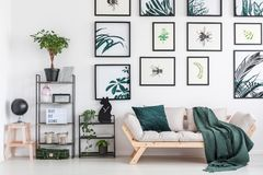 Cat shaped clock. Small metal rack with plants and cat shaped clock standing next to wooden couch with green coverlet Stock Images