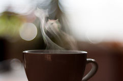 Cat shaped steam above cup. Cat shaped steam rising above cup with hot drink Royalty Free Stock Image