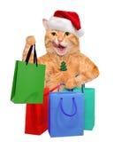 Cat Shopper Sales Imagen de archivo