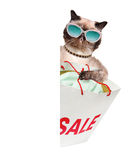 Cat. Shopper. Sales. Royalty Free Stock Images
