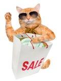 Cat Shopper Sales. Stock Photo