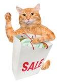 Cat. Shopper. Sales. Royalty Free Stock Photo