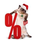 Cat  Shopper  Sales. Royalty Free Stock Photos