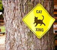 Cat Sign Imágenes de archivo libres de regalías