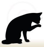 Cat Silhouette Immagini Stock Libere da Diritti