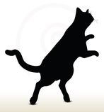 Cat Silhouette Fotografie Stock