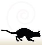 Cat Silhouette Immagine Stock Libera da Diritti