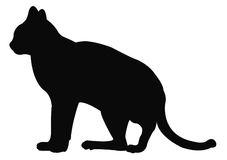 Cat Silhouette Immagine Stock