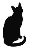 Cat Silhouette Fotografia Stock