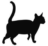 Cat Silhouette Fotografia Stock Libera da Diritti