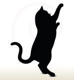 Cat silhouette Royalty Free Stock Photos