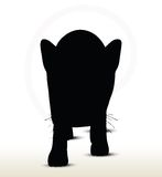 Cat silhouette Royalty Free Stock Images