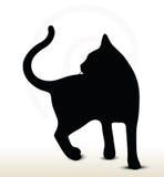 Cat silhouette Stock Image