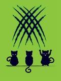 Cat Silhouette nera con i graffi Immagini Stock