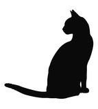 Cat silhouette royalty free stock photo