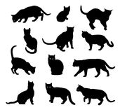 Cat silhouette vector set  isolated on white Royalty Free Stock Photos