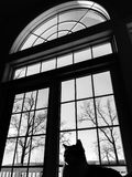 Cat Silhouette in Venster stock fotografie