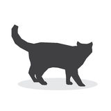Cat silhouette on a white background. Vector illustration Stock Photo