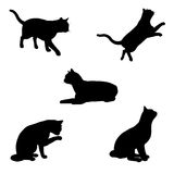 Cat Silhouettes - 1 Royalty Free Stock Images